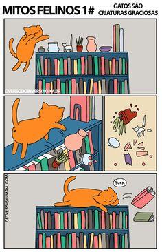 Mitos felinos
