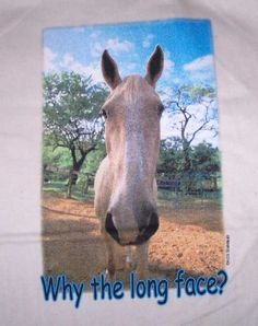 Why the Long Face? Horse Shirt