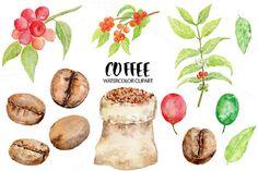 Watercolor Coffee Beans Clipart by Corner Croft on Creative Market?u=chengjing