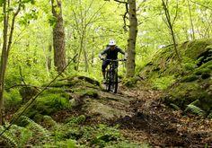 Gothenburg, Sweden - under the radar mountain bike trails Photo: Greg Heil.
