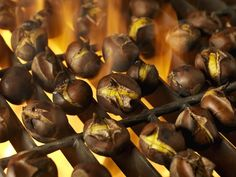 Roasting Chestnuts on an Open Grill for the Holidays