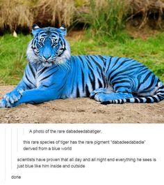 357 best Paleoilustraciones images on Pinterest