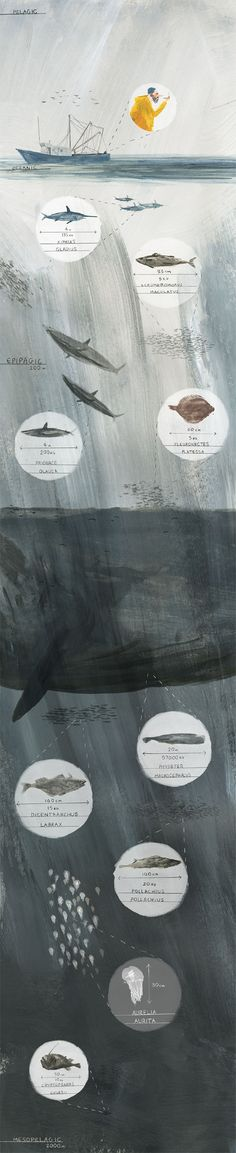 art, illustration, ocean, water, whale, fish, depths, // Joe Todd Stanton.