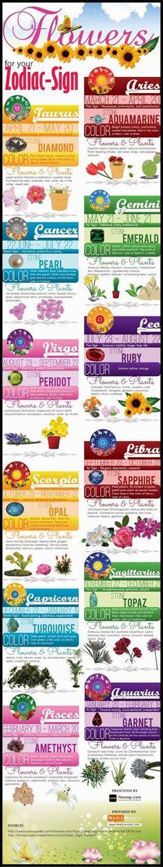 Astrology: Stones, Colors, Flowers, Plants + Zodiac Signs | #zodiac #astrology