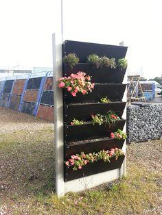 verticale tuin, geschikt voor diverse planten, maar ook groentes, en als afscheiding tussen 2 balkons. @tuinmani www.tuinmani #tuinmani Fungi, Garden Plants, Ladder Decor, Flora, Home Decor, Homemade Home Decor, Mushrooms, Decoration Home, Patio Plants