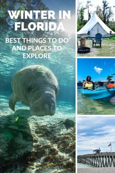 Winter in Florida - Best Things to Do and Places to Explore