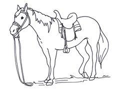 malvorlage pferde pferde   malvorlagen pferde, ausmalbilder pferde, malvorlagen tiere