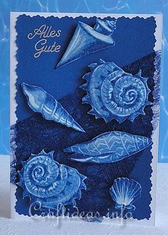 Birthday Card - Greeting Card - Maritime - Seashells Card