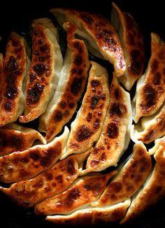 Gyoza  - Japanese style dumplings | Higuccini