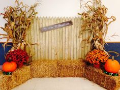 Awesome Fall Wedding Themes You Cannot Miss! 5 Awesome Fall Wedding Themes You Cannot Miss! 5 Awesome Fall Wedding Themes You Cannot Miss! Halloween Fotos, Theme Halloween, Fall Halloween, Halloween Photo Booths, Halloween Dance, Halloween Festival, Fall Photo Booth, Photo Booth Backdrop, Backdrop Ideas