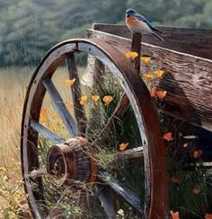 Love old wagons.and blue birds! Country Charm, Country Life, Country Living, Country Roads, Rustic Charm, Esprit Country, Beautiful Birds, Beautiful Pictures, Vie Simple
