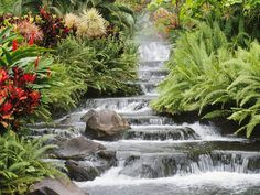 Next you need to estimate the head loss to the waterfall, which is the height from the pump to the waterfall and a little more for the tubing. Description from koi-pond-guide.com. I searched for this on bing.com/images