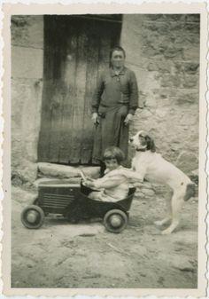 Dog driving a girl driving a car, 1935