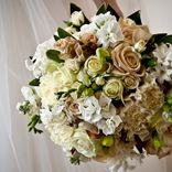 Wedding Flowers Brisbane | Wedding Florist Brisbane | Wedding Bouquets Brisbane | Bridal Bouquets Brisbane | Kate Dawes Flower Design