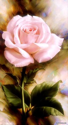 Art Floral, Power Wallpaper, Double Exposition, Rose Crafts, Beginner Painting, Rose Art, Fruit Art, Exotic Flowers, Beautiful Roses