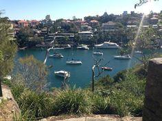 Cremorne Point to Mosman Bay Walk - Sydney, Australia