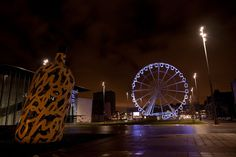 Middlesbrough Wheel and Bottle of Notes North East England, Middlesbrough, My Town, Boro, Yorkshire, Roots, Fair Grounds, Explore, Bottle