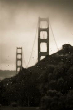 Original art for sale at UGallery.com | Rainy View by Niki Ward | photography