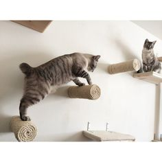 Floating Sisal Cat Wall Post  catsplay.com