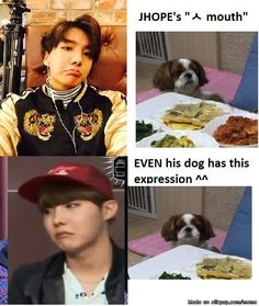 Hobi and his puppy both with the ㅅ mouth!