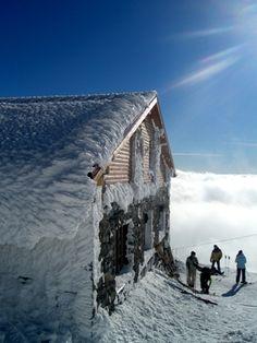 Ski Centre Chopok - South, Slovakia European Countries, Cool Countries, Heart Of Europe, Big Country, Central Europe, Bratislava, Slovenia, Czech Republic, Homeland