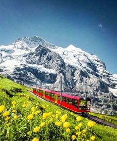 Switzerland Travel Guide, Switzerland Cities, Jungfraujoch, Top Place, Lausanne, Best Cities, Travel Images, Wonders Of The World, Places To See