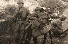 A Fallschirmjäger with a mule, Crete ,1941