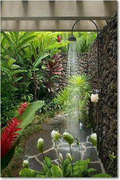 many plants, tembok batu lahar..