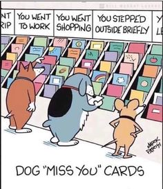 "Dog ""miss you"" cards I Love Dogs, Puppy Love, Cute Dogs, Cutest Puppy, Animal Memes, Funny Animals, Cute Animals, Animal Quotes, Funny Cartoons"