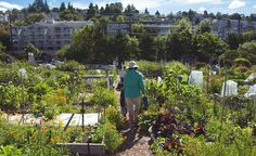 Agrihoods Give the Commune a Suburban-Living Makeover.   Some believe building housing and farms side by side could be the future of the local food movement.