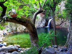 A remarkable phenomenon in Samothrace is the formation of natural lakes in which end the waters of the waterfalls. The vathres of the island are more than a hundred in number,. Samos, Greece Vacation, Greece Travel, Places In Greece, Greece Islands, Exotic Beauties, Beautiful Landscapes, Beautiful Places, Scenery