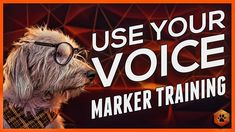 Using Marker Training - Using your Voice with your Dog Puppy Training Tips, Dog Training Videos, Training Your Dog, I Love Dogs, Puppy Love, Dog Commands, Rhetorical Question, Behavioral Issues, Aggressive Dog