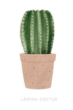 Image of Cactus redondo Cactus Drawing, Cactus Art, Cactus Plants, Cacti, Cactus Painting, Cactus Illustration, Art And Illustration, Botanical Illustration, Wallpaper Gatos