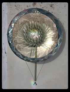 WoW  Herbarium - snegireva / Sacred Geometry <3