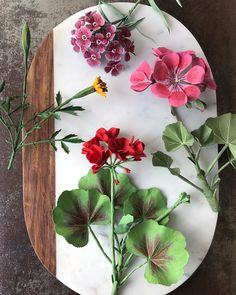 """2,359 Likes, 125 Comments - Ann Wood and Dean Lucker (@woodlucker) on Instagram: """"A new paper red geranium added to this grouping of paper garden flowers. . . #woodlucker #annwood…"""""""