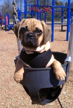 Swinging puggle