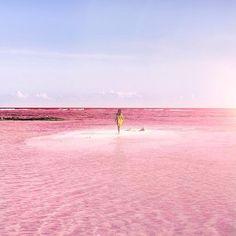 Intensywnie różowa laguna – największa atrakcja turystyczna meksykańskiej wioski…