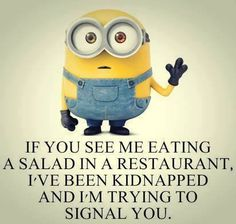 Funny Minion Quotes Of The Day                                                                                                                                                      More