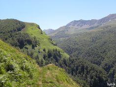 Circuit passerelle d'Holzarté et Pont d'Holhadubi / Pays Basque / Pyrénées