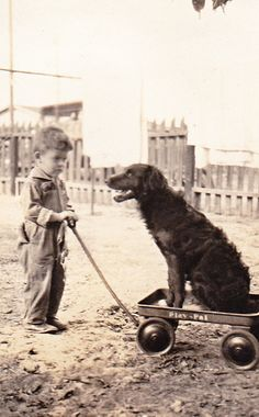 +~+~ Vintage Photograph ~+~+ Adorable boy pulling his dog in a wagon