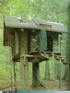 one of my many treehouses