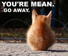 ur mean. go away