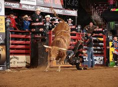 Can Joao Ricardo Vieira finally steal 8 seconds from Beaver Creek Beau in their fifth career matchup? Find out when the #PBREUG 15/15 Bucking Battle airs on @cbstv at 5pm ET. Check your local listing.