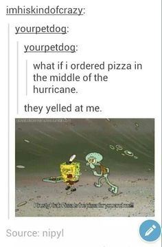 Don't order pizza in the middle of a hurricane. Learn, from the lessons of the sponge named Bob.