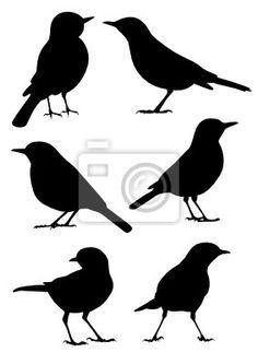 Adesivos arte clipart, illustration, abstrat - silhueta dos pássaros - 6 ilustrações diferentes ✓ Montagem fácil ✓ 365 dias para devolução ✓ Confira outros modelos desta coleção!
