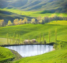 Photo Fields by the pond by Marcin Sobas on 500px