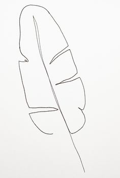 Palm leaf Pen/ink drawing of a palm leaf. Experiment of dr. - Palm leaf Pen/ink drawing of a palm leaf. Experiment of dr… – Palm leaf - Beauty Illustration, Ink Illustrations, Leaf Illustration, Ink Pen Drawings, Easy Drawings, Line Drawings, Silhouette Girl, Art Abstrait Ligne, Line Art Flowers