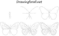 Learn Drawing How to Draw a Butterfly for Beginners - Hello dear artists! In today's drawing lesson we will show you how to draw a butterfly. In general it will be very simple tutorial. Butterfly Sketch, Butterfly Art, Butterfly Design, How To Draw Butterfly, Simple Butterfly, Easy Butterfly Drawing, Butterfly Costume, Origami Butterfly, Butterfly Birthday