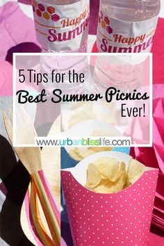 5 Tips for the Best Summer Picnics Ever on UrbanBlissLife.com AD ChipLove