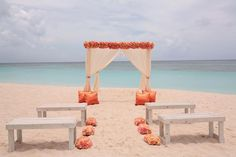 simple wood benches mixed with coral, peach & orange flowers for a small beach wedding.
